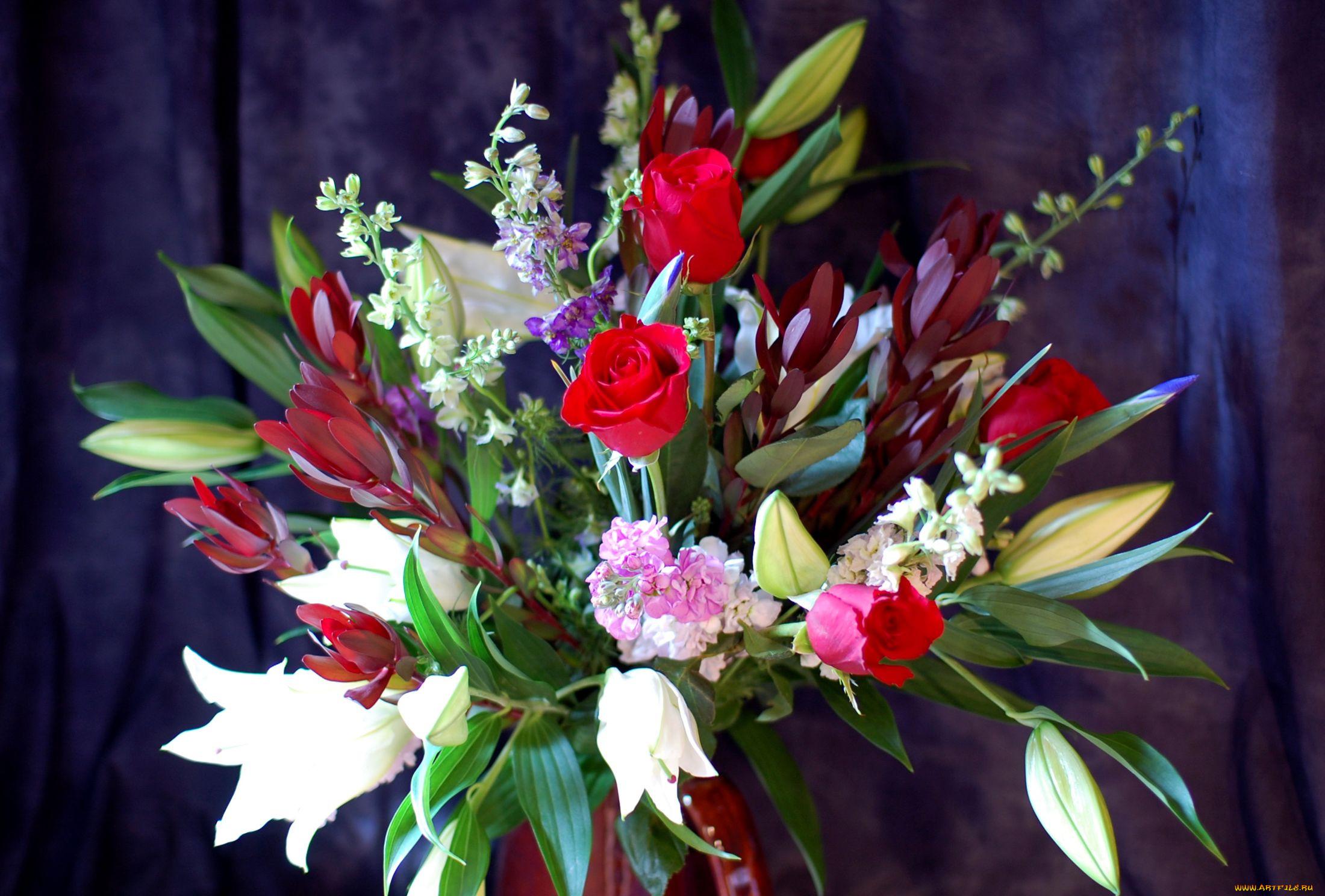 Лилии и тюльпаны картинки